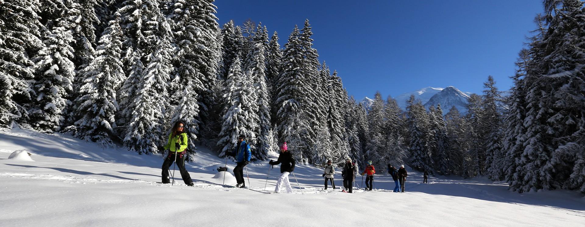 Deep escape, chamonix - winter and summer activities